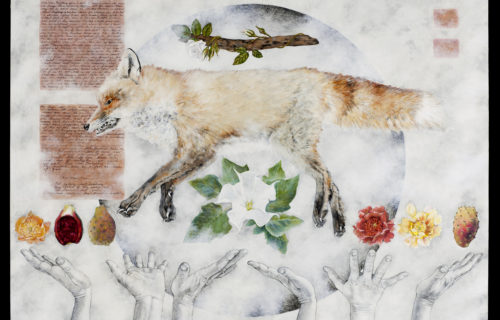 """Baizhang's Fox"" by Allison Atwill, Roshi"